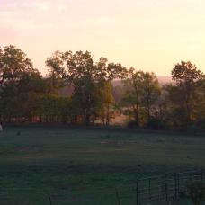 Easter Sunday sunrise w frosty